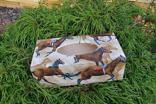 Krabička na kapesníky - koně
