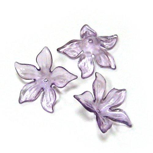 Květ velký fialový průhledný