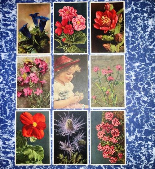 Květiny ... soubor 9 uměleckých pohlednic