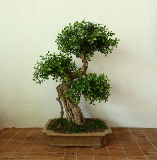 Tento strom není živý ani pravý, přesto je krásný