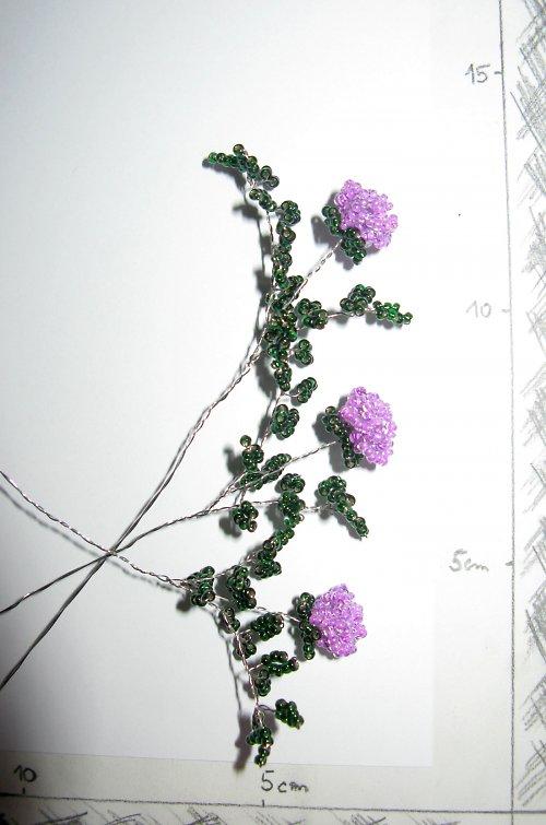 Růže korálková fialová vícelistá