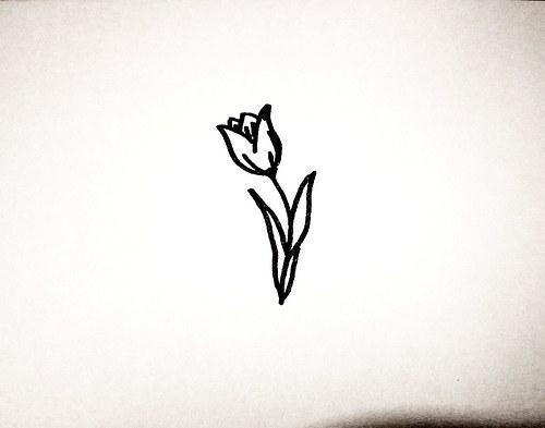 Tulipán. Omyvatelné.
