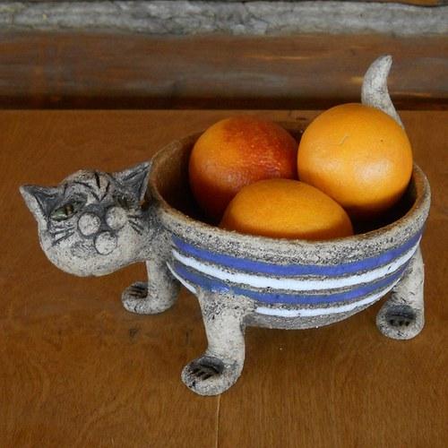 Miska kočka pruhovaná