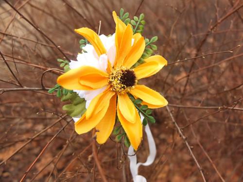 sluneční květ