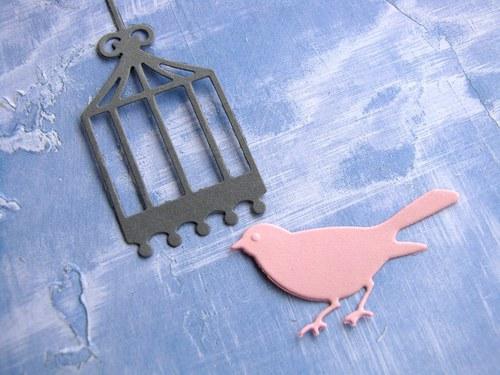 Ptáček s malou klecí
