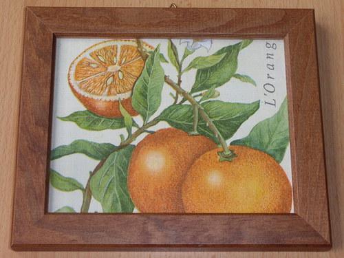 Obrázek s pomeranči