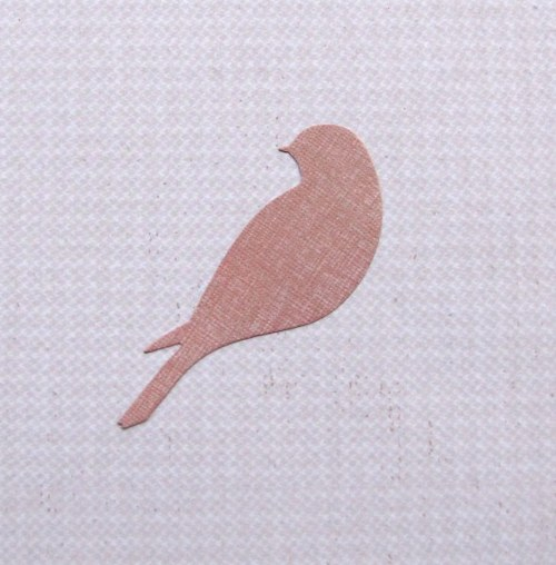 Elegantní sedící ptáček