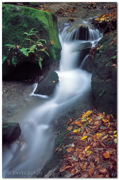 Podzim na potoce