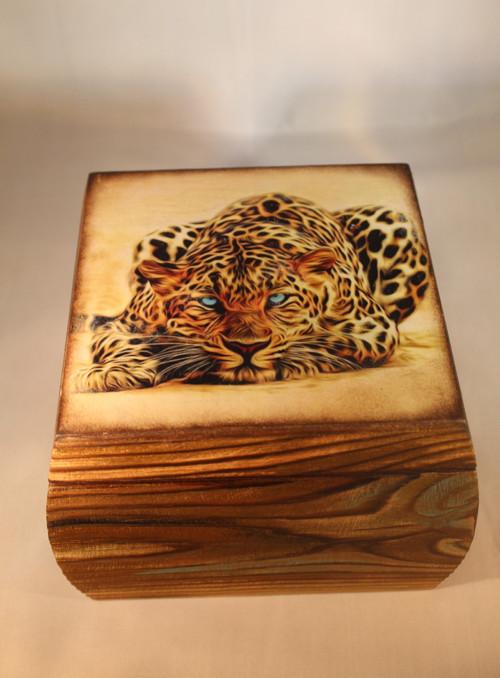 Krabička Leopard