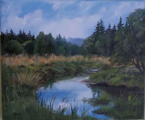 Slatinný potok - Šumava