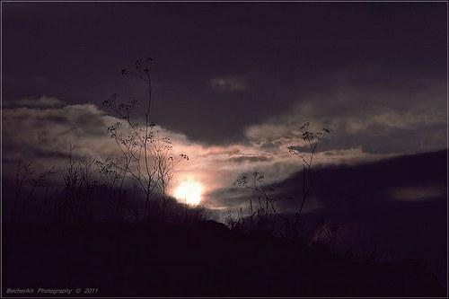 Swallow The Sun II