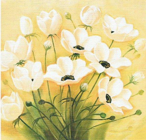 Reprodukce - tisk - Bílé květiny 15x15cm - 0004