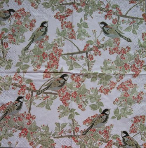 Ptáčci na květech č. 1745