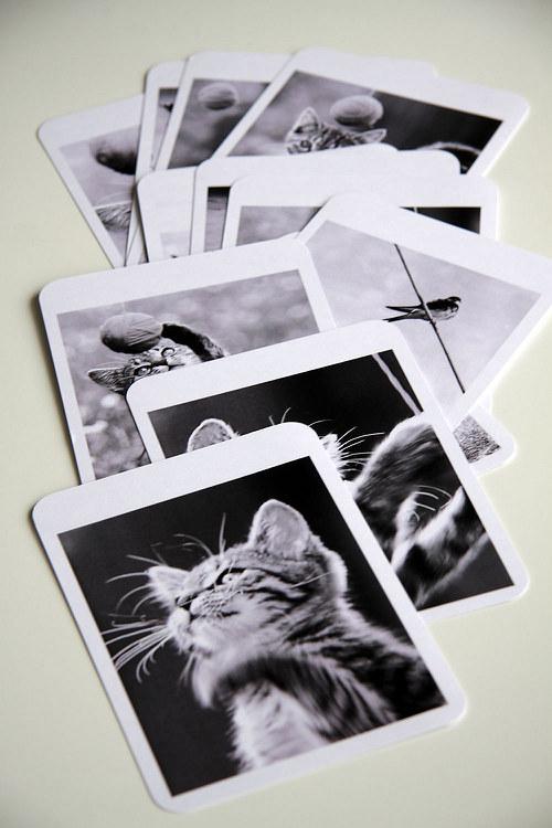 Trochu živá girlanda / pohlednice / kartičky