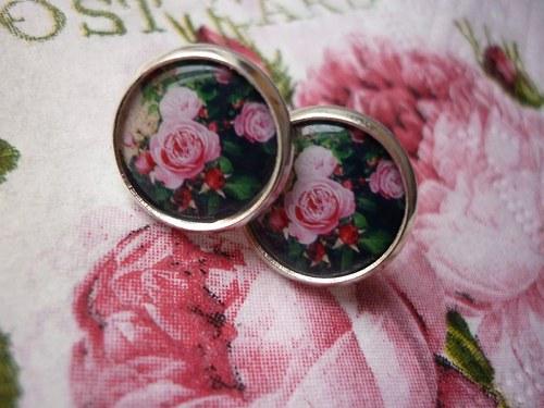 Růže z  Edinburghu  - pecičky