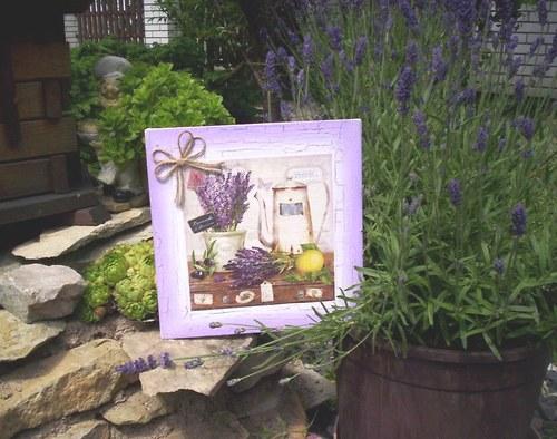 Levandulový obrázek 7 - zátiší s levandulí