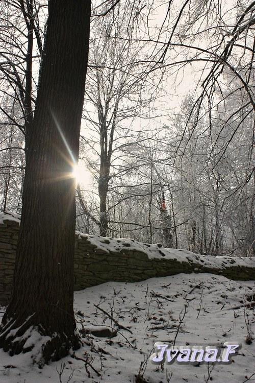 Zimní klid