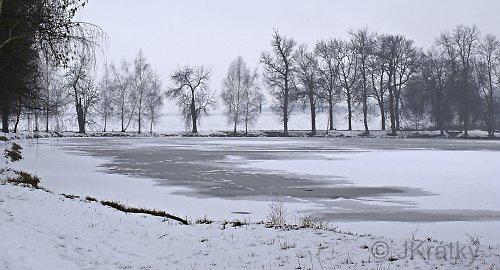 Zima na rybníku