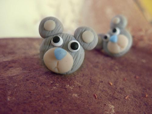 Medvědi-šedí