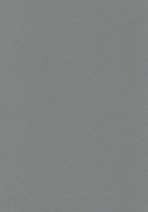 Fotokarton A4 šedý