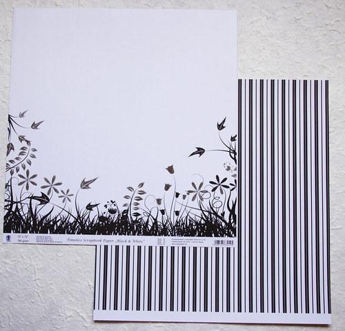 Scrapbookový papír - Black and White 10