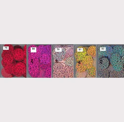 Flitry 20 mm MIX2-5 barev - třpytivé - bal. 5x5g