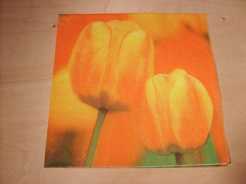 Ubrousek - tulipány 1