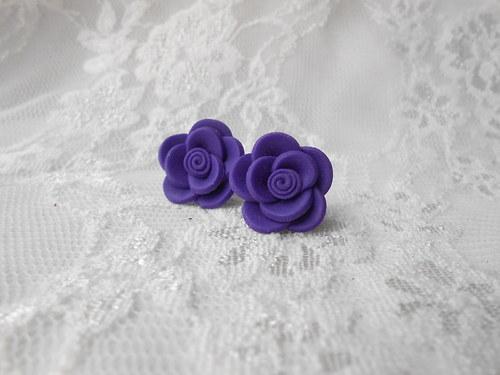 Růžičky fialové