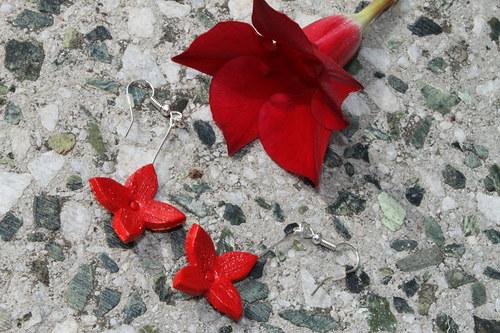 Červené květinky II