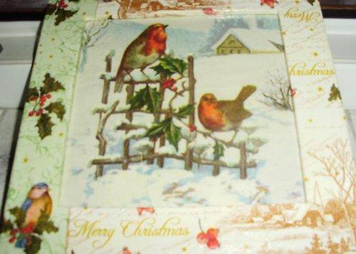 Vánoční ptáčci