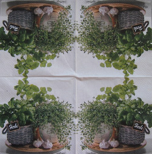Zátiší s bylinkami č. 1644