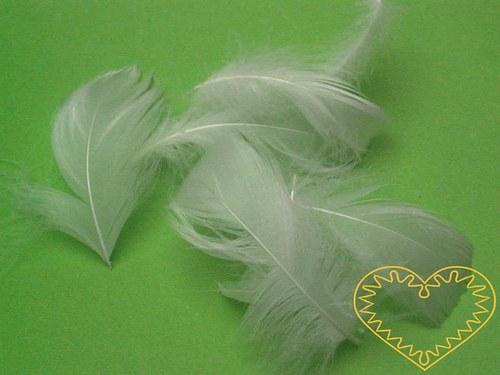 Peříčka bílá - balení 15 g (přes 200 ks)