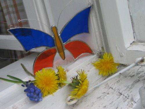 motýl modro-oranžový