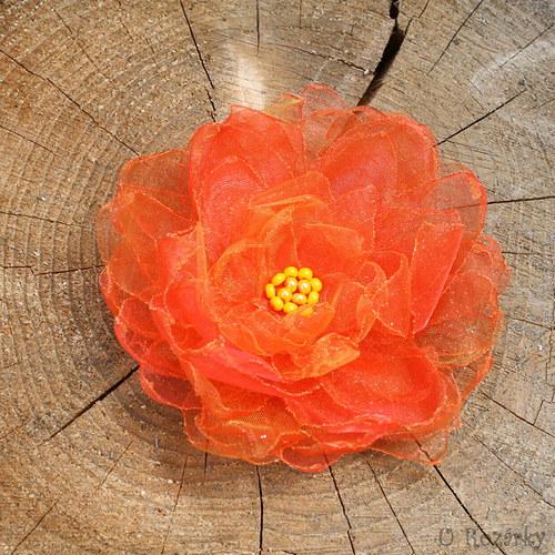 Leknínek - oranžový - velký
