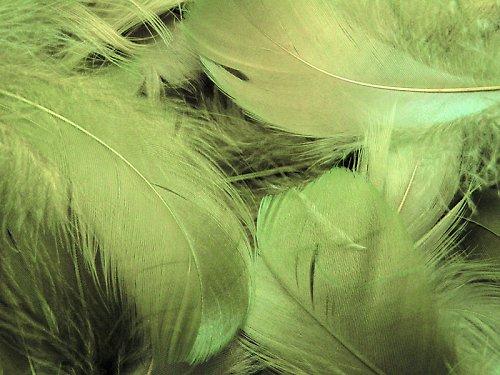 Pírka olivově zelená ((OST112))