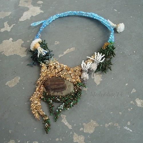 Staří obyvatelé mělkých moří