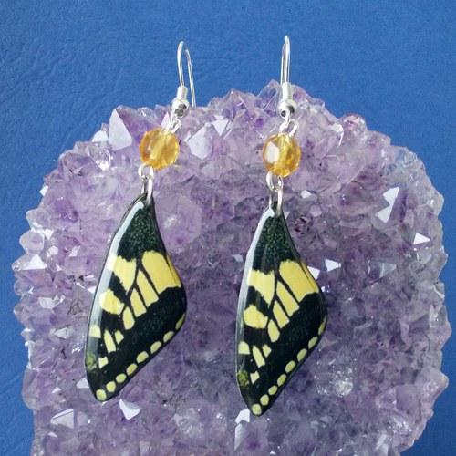 Náušnice motýl - mot33