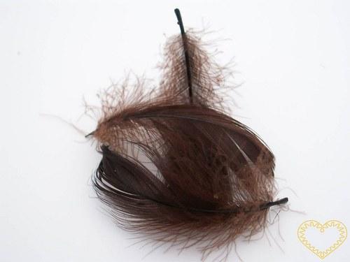 Peříčka tmavě hnědá - balení 15 g (cca 250 kusů)