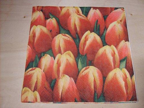 Ubrousek - tulipány 2