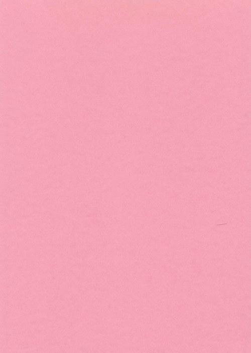 Fotokarton A4 růžový - 22