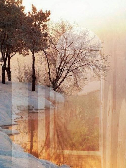 Zima v tiché zátoce