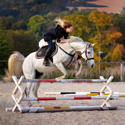 Princezna na bílém koni... Šaty gázové s rukávem