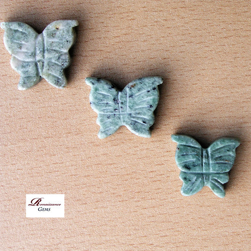 Mramoroví motýlci (jednotlivě)