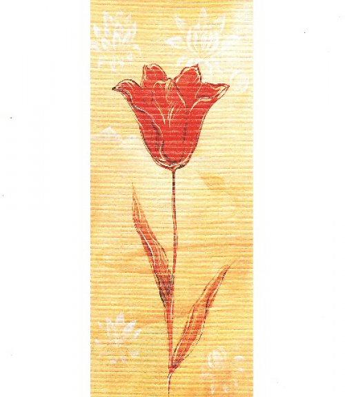 Reprodukce - tisk - Červený tulipán 10x25cm -03