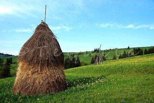 Jaro na Zakarpatí