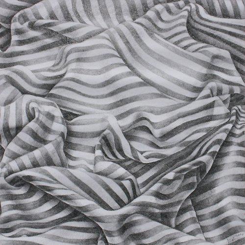 Pomačkaná zebra