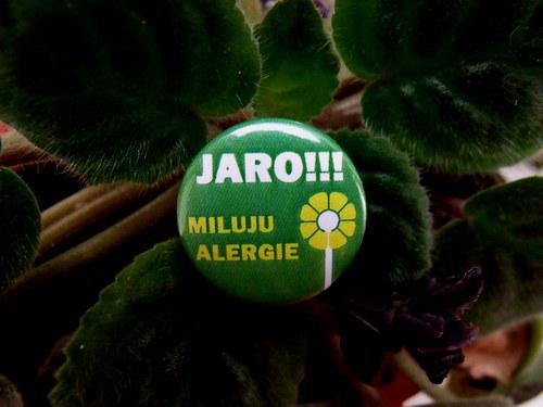 """Button \""""Miluju jaro - alergie\"""""""