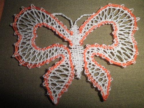 Motýlek paličkovaný