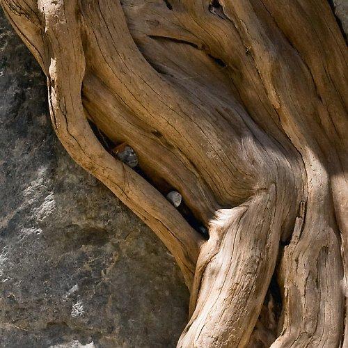 Kámen a dřevo