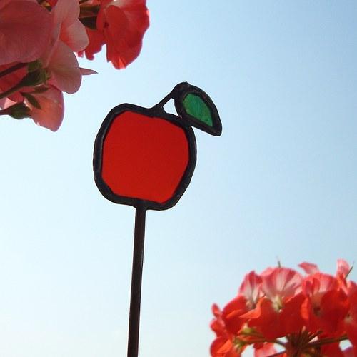 Jablíčko do květináče